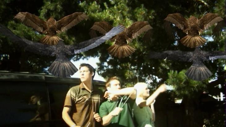 Birdemic cap 9
